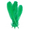 "Turkey Quill 12"" Green"